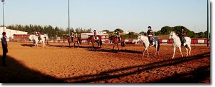 Escuela Hípica en Lepe ( Huelva ) Montar a caballo 3