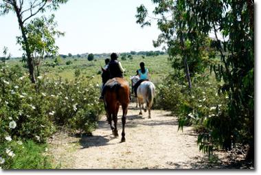 Escuela Hípica en Lepe ( Huelva ) Montar a caballo 2