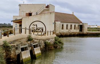 Ecomuseo Molino de el Pintao
